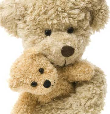 Teddy Bear and Friend